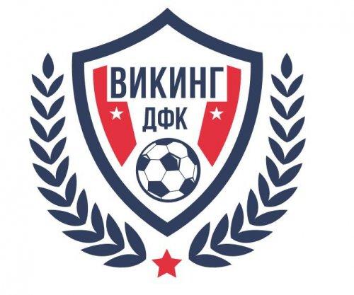 Логотип организации Детский футбольный клуб Викинг